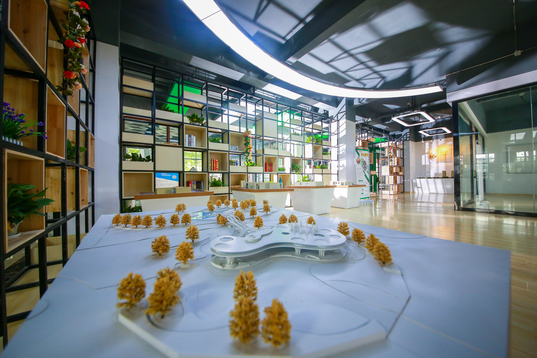 南京新华电脑专修学院——数媒影视文创艺术学院