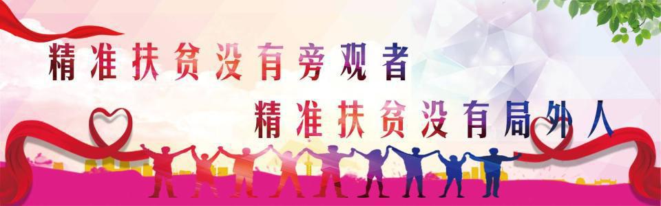 国家扶贫日;新华公益进行时